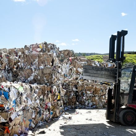 recycling bales paper shutterstock 190579565