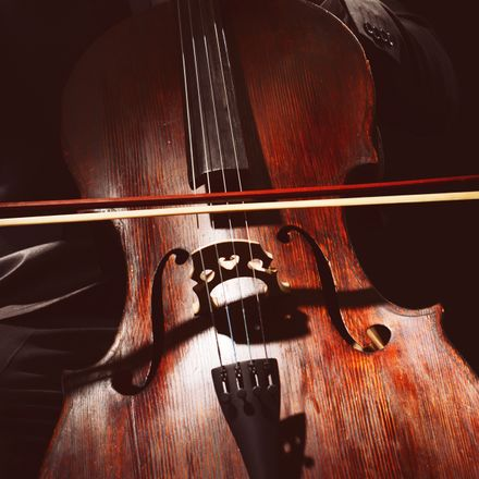 cello shutterstock cropped 322308161