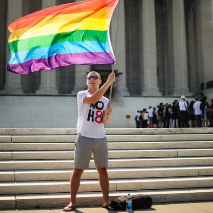 A federal court upheld gay marriage bans on Thursday, pushing the issue towards the Supreme Court.