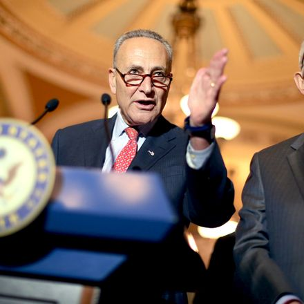 schumer getty images 482926872