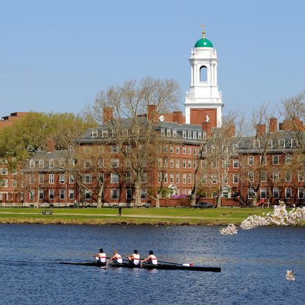 Harvard University rowers shutterstock 19783951