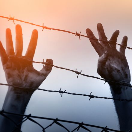 Refugee man hand barb wire fence shutterstock 371533795