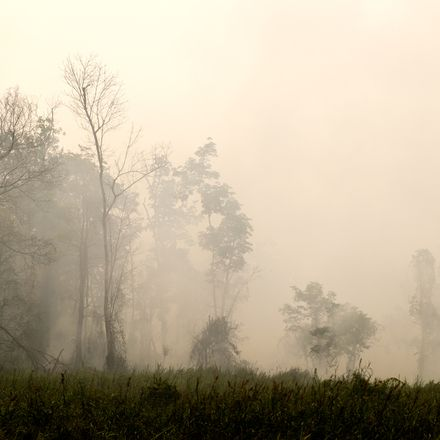 Haze forest fire shutterstock 400616488