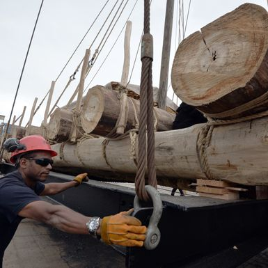 This Wood Is Key to Wind Power. Too Bad There's a Shortage