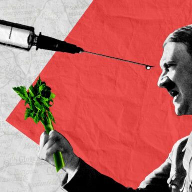 'Flashback' Lecture Notes: How Hitler's Doctor Changed the Course of World War II